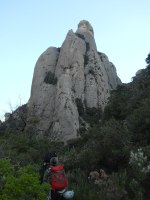 Esparraguera a la Roca Gris, Montserrat, Espagne 1