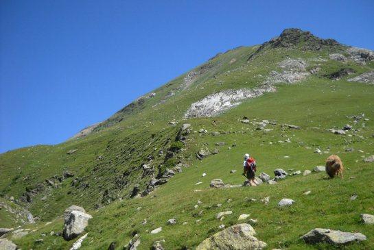 Combe d'accès au sommet