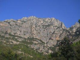 L'avi Trepador a la Codolosa, Montserrat, Espagne 2