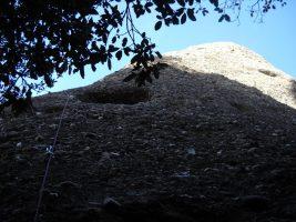 Aresta Brucs a l'Arbret, Agulles, Montserrat, Espagne 3