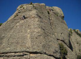 Aresta Brucs a Can Jorba, Montserrat, Espagne 3