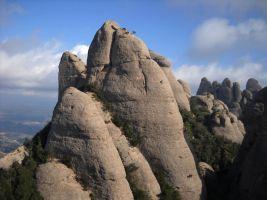 Aresta Brucs a la Sacagran, Montserrat, Espagne 3