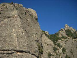 Aresta Brucs a Can Jorba, Montserrat, Espagne 8