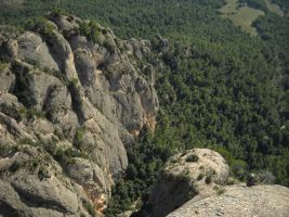 Aresta Brucs a Can Jorba, Montserrat, Espagne 9