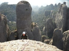 Aresta Brucs a l'Arbret, Agulles, Montserrat, Espagne 10