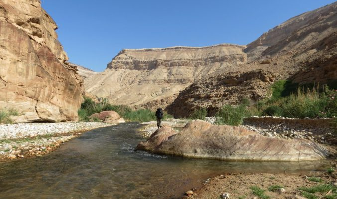 Wadi Hasa, Moab 14