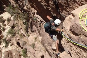 Nuances de Grès, Wadi Tibn, Petra, Jordanie 13