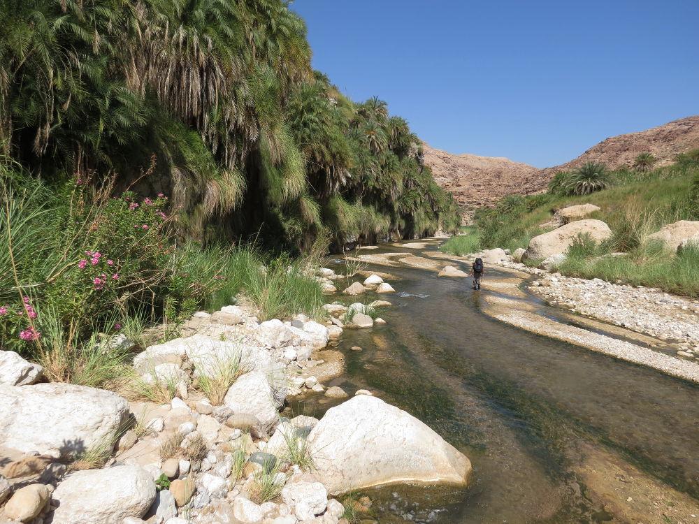 Wadi Hasa, Moab 16
