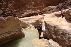 Wadi Zerqa Ma'in, Moab 3