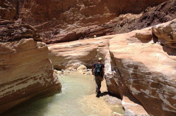 Wadi Zerqa Ma'in, Moab 2