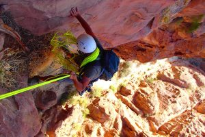 Nuances de Grès, Wadi Tibn, Petra, Jordanie 15