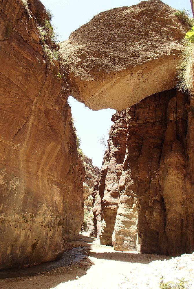 Wadi Kerak, Moab 29