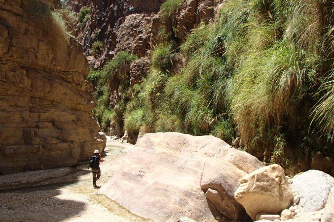 Wadi Kerak, Moab 35
