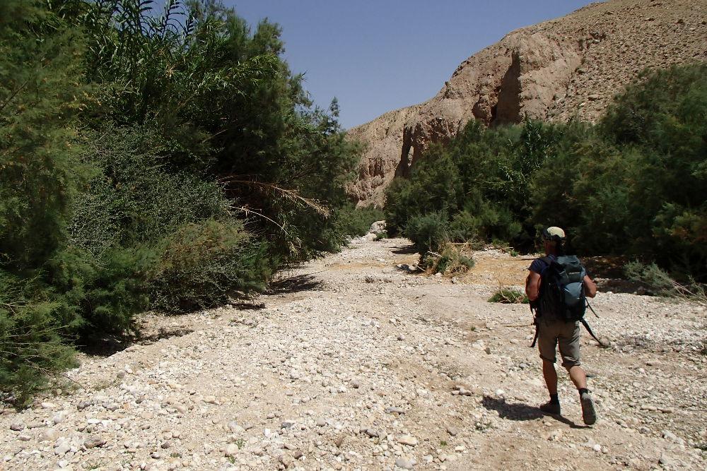 Wadi Kerak, Moab 5