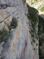 Camel a la Roca dels Arcs, Vilanova de Meïa, Espagne 11