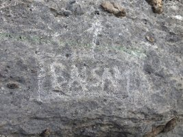 Basalm del Tigre a la paret Bucolica, Oliana, Espagne 3