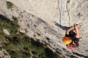 Basalm del Tigre a la paret Bucolica, Oliana, Espagne 6