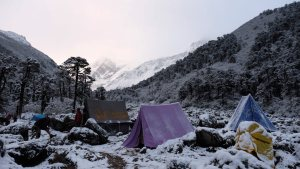 Goecha La Trek, West Sikkim, Inde 54