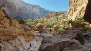 Wadi Tiwi, Hajar Oriental 8