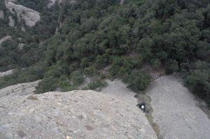 Aresta Arcarons als Plecs del Llibre, Montserrat, Espagne 3