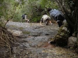 Canal del Cavall Bernat, Montserrat 5