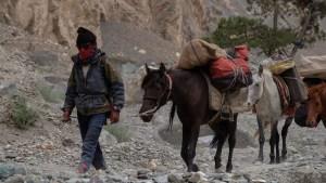 Zinchan, Markha Valley & Zalung Karpo La, Ladakh, Inde 26