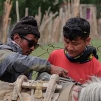 Zinchan, Markha Valley & Zalung Karpo La, Ladakh, Inde 39
