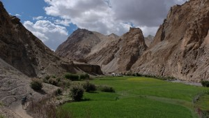 Zinchan, Markha Valley & Zalung Karpo La, Ladakh, Inde 52