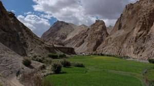 Zinchan, Markha Valley & Zalung Karpo La, Ladakh 51
