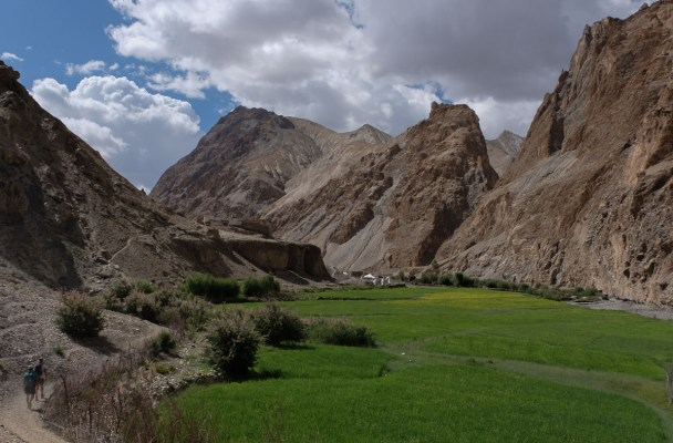 Zinchan, Markha Valley & Zalung Karpo La, Ladakh 2