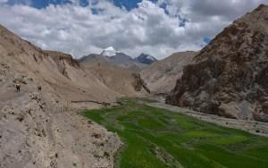 Zinchan, Markha Valley & Zalung Karpo La, Ladakh, Inde 57