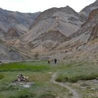 Zinchan, Markha Valley & Zalung Karpo La, Ladakh 60
