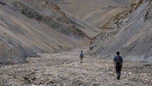Zinchan, Markha Valley & Zalung Karpo La, Ladakh, Inde 62