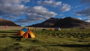 Tso Kar au Tso Moriri, Ladakh, Inde 12