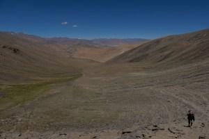 Tso Kar au Tso Moriri, Ladakh, Inde 26