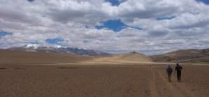 Tso Kar au Tso Moriri, Ladakh, Inde 41