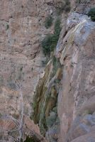 Wadi Aqabat El Biyout, Sayq Plateau 44