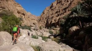 Wadi Shab, Hajar Oriental 28