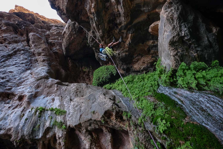 Wadi Halfain, Sayq Plateau 1