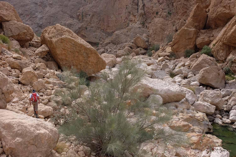 Wadi Naqma, Hajar Oriental 8