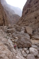 Wadi Naqma, Hajar Oriental 13