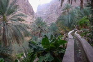 Wadi Naqma, Hajar Oriental 25
