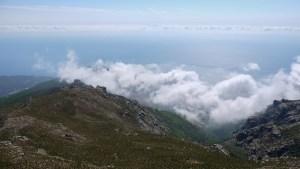 Monte Stellu, Cap Corse 20