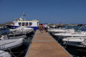 Macinaggio à Bargaggio, sentier des douaniers, Cap Corse 49