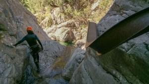 Ruisseau de Zoïcu, Soccia 22