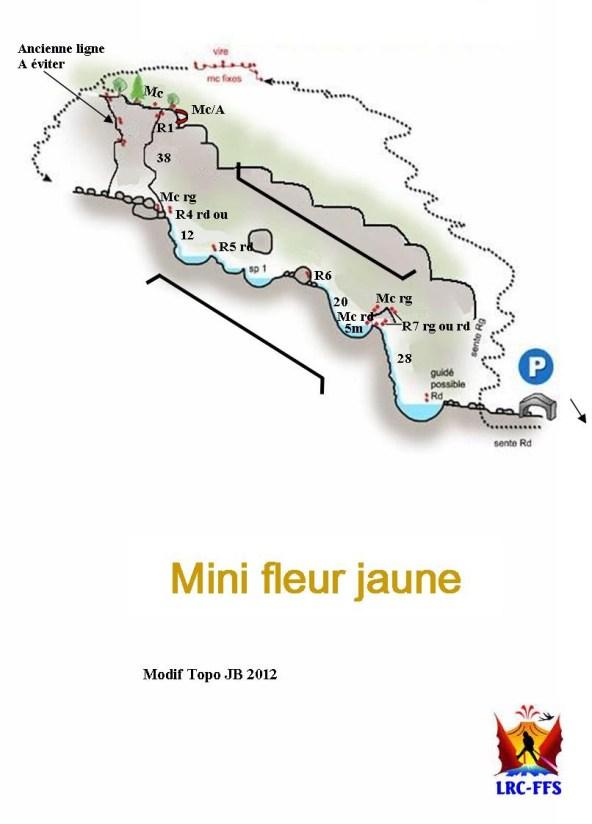 Mini Fleurs Jaunes, Cilaos 2