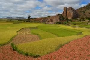 La tête de la tortue, falaises d'Ambatovaky, Antananarivo, Madagascar 9