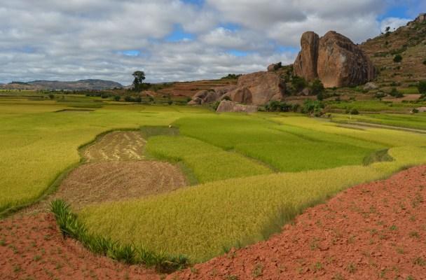 La tête de la tortue, falaises d'Ambatovaky, Antananarivo, Madagascar 2