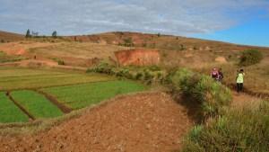 Circuit Betafo, Antsirabe, Madagascar 22