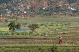Circuit Betafo, Antsirabe 28